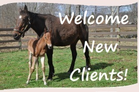 welcome clients